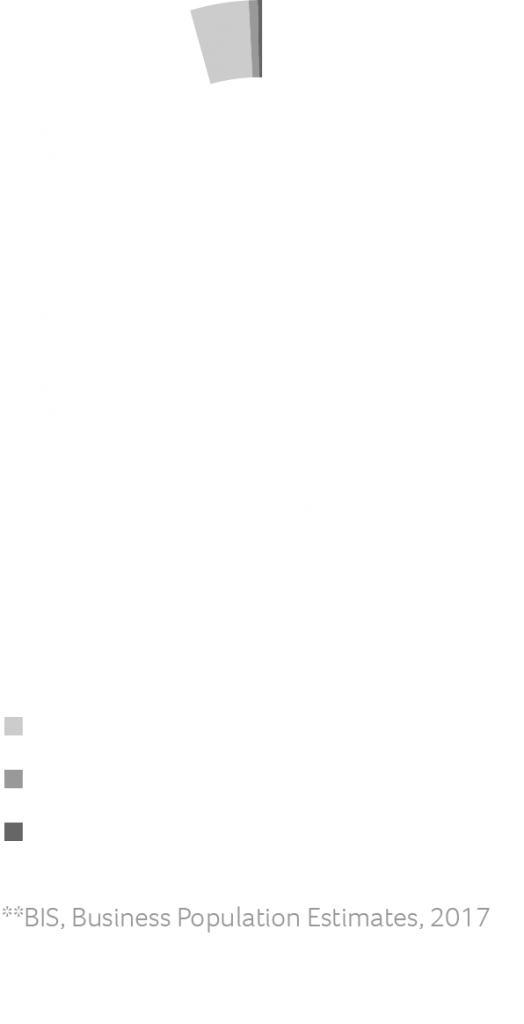 Private sector businesses in the UK by number of employees graph